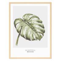 Poster 'Monstera' 30x40 cm Aquarell Optik Küchenmotiv  – Bild 6