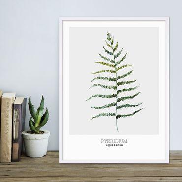 Poster 'Farnkraut' 30x40 cm Aquarell Optik Küchenmotiv