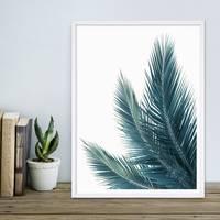 Poster 'Kokosblätter' 30x40 cm Foto Küchenmotiv Abstrakt – Bild 4