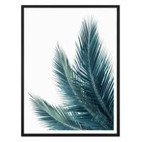 Poster 'Kokosblätter' 30x40 cm Foto Küchenmotiv Abstrakt – Bild 3