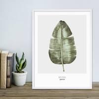 Poster Bananenblatt 30x40 cm Aquarell Optik Küchenmotiv Musa